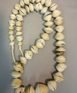 Beadology Iowa Graduated Muritanian Shell Strand