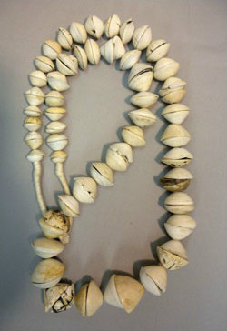 Beadology Iowa Graduated Muritanian Shell Strand